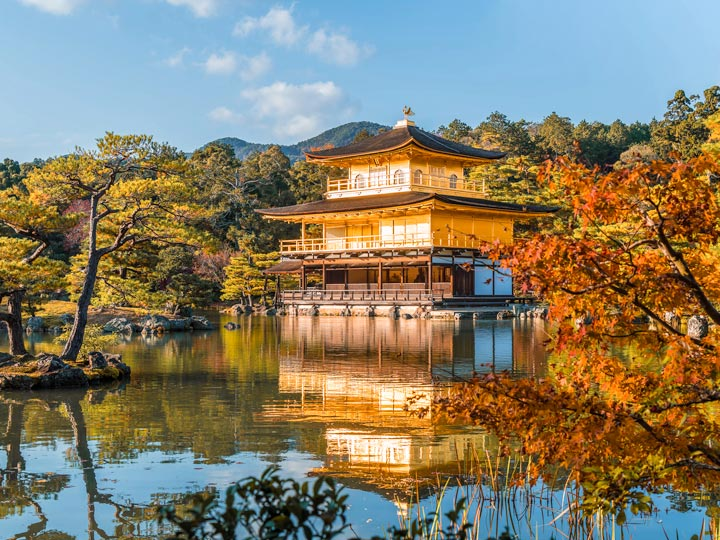 Gold Kinkakuji temple reflecting in pond surrounded by autumn trees