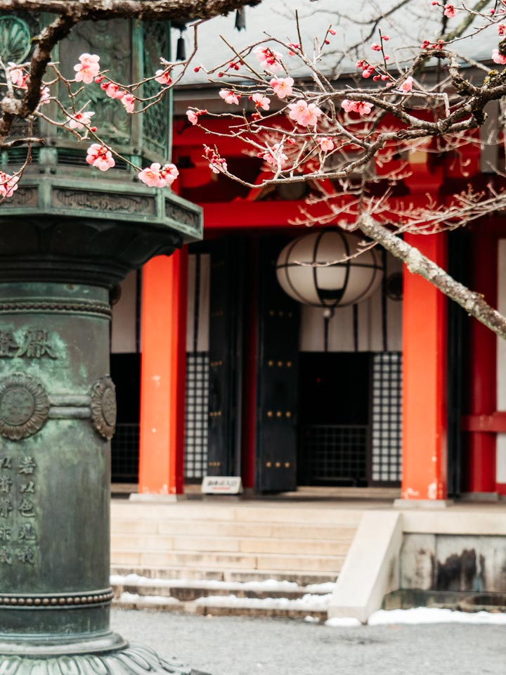 Kuramadera entrance with lantern and cherry blossoms