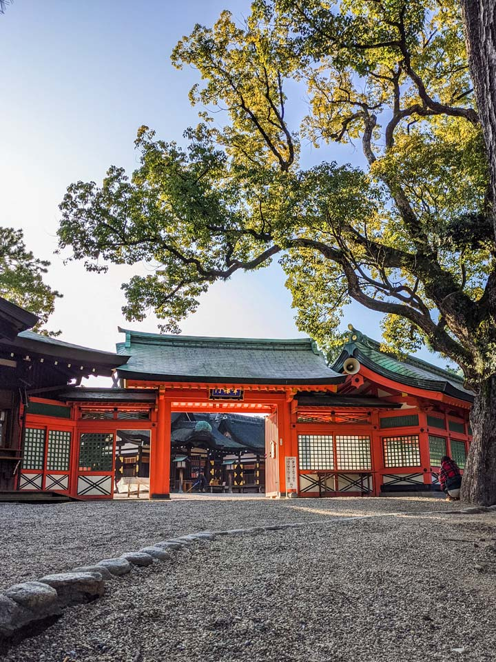Osaka Sumiyoshi Taisha temple gate with tree at sunrise