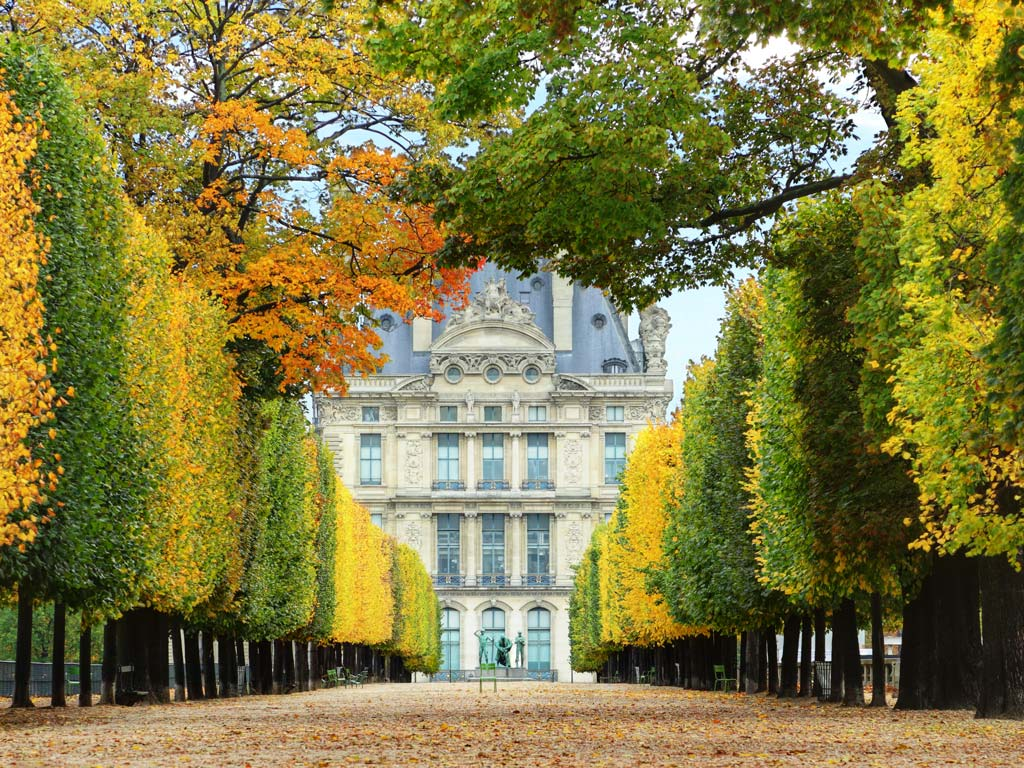 View of Paris Tuileries Garden at autumn with street lined with rows of trees.