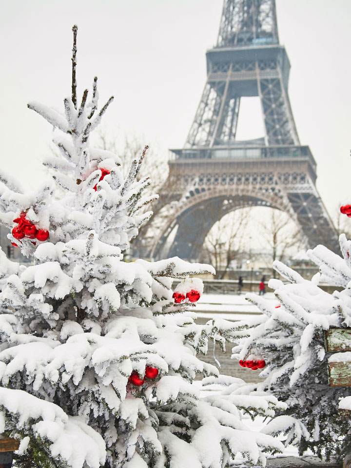 Snowy pine trees with red ornaments in front of Eiffel Tower winter in Paris