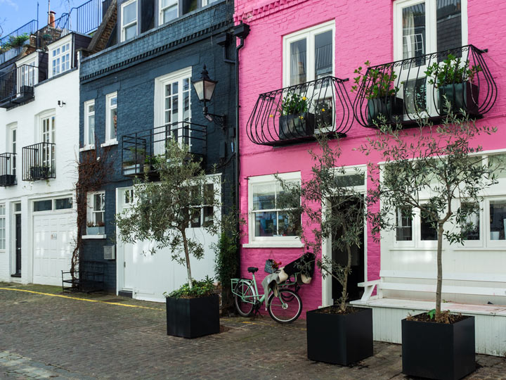 Facades of pink and blue London mews houses
