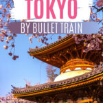 Day Trips from Tokyo by Bullet Train - Pagoda tower with cherry blossoms in foreground
