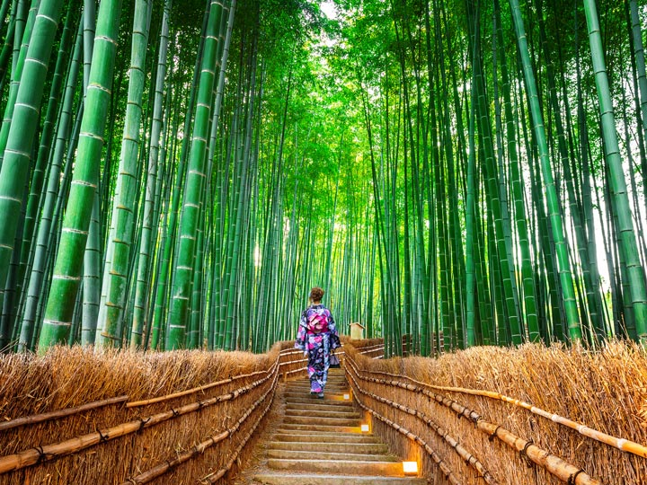 Girl in kimono walking through Arashiyama bamboo forest path