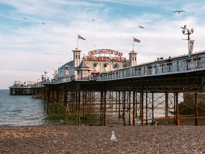 Brighton Pier at sunset with seagull on beach