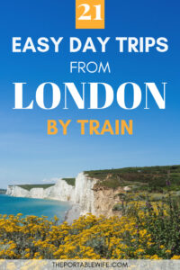 21 Easy Day Trips from London by Train - Yellow flowers with view of white cliffs and ocean