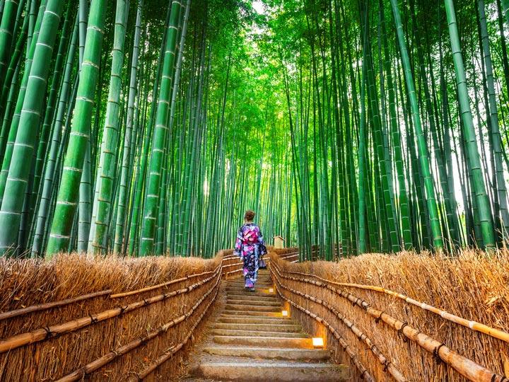 Woman walking through Sagano bamboo forest in Kyoto Arashiyama district