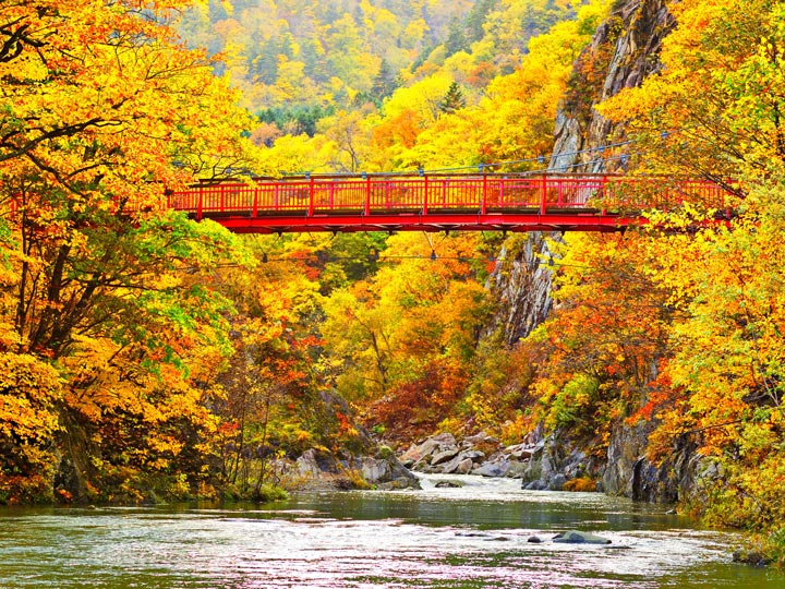 Red bridge over gorge in Japan park during autumn