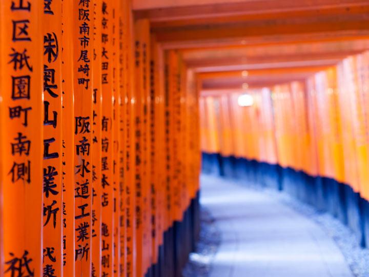 Orange torii gates with black writing at Fushimi Inari shrine