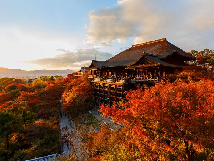 Orange and red autumn trees surrounding Kiyomizu-dera main hall at sunset