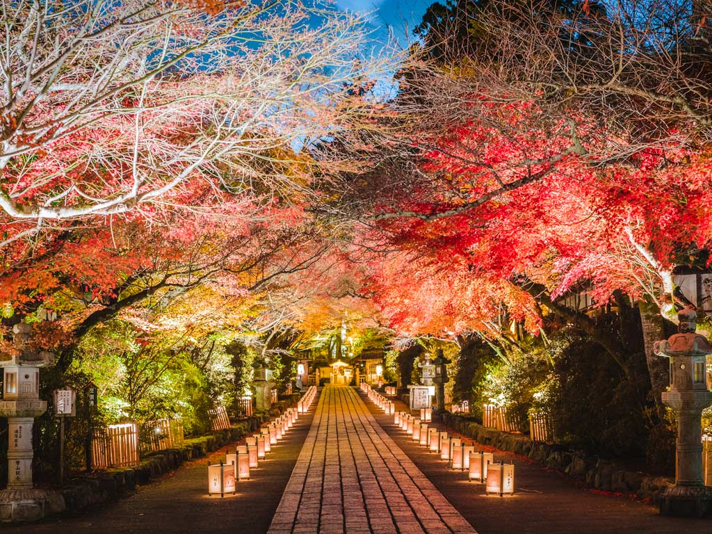 Ishiyamadera temple at night with autumn leaves and path lined with paper lanterns