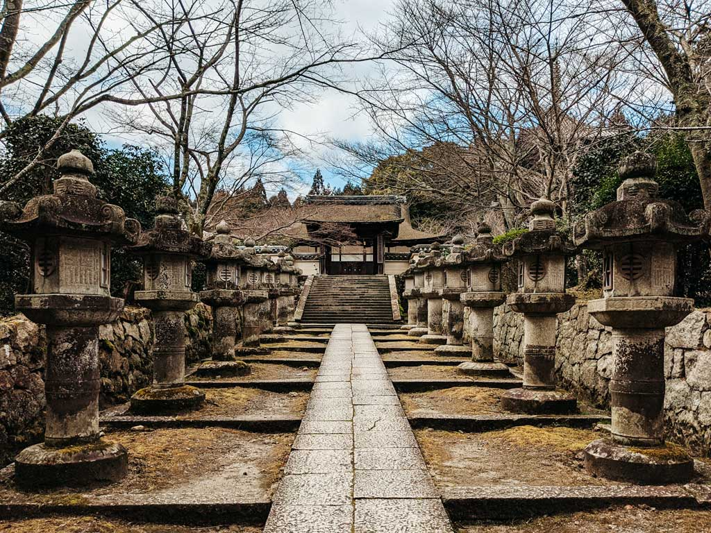 Pathway to shrine gate lined with moss-covered stone lanterns