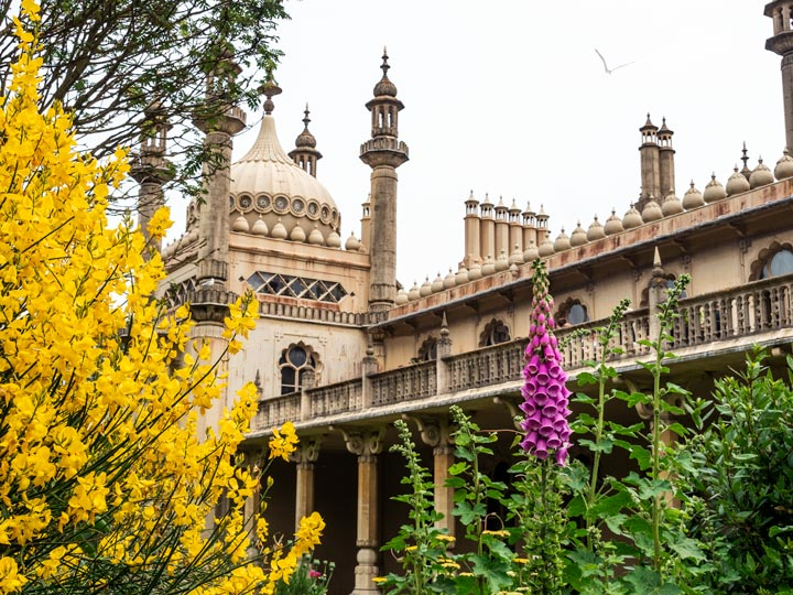 Brighton Palace balcony and tower with yellow and purple flowers in foreground
