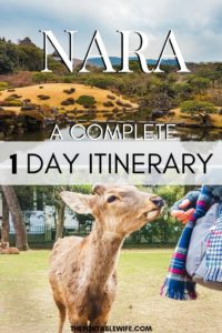 Nara Day Trip Itinerary