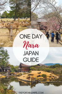 One Day in Nara Japan: Nara Day Trip Guide