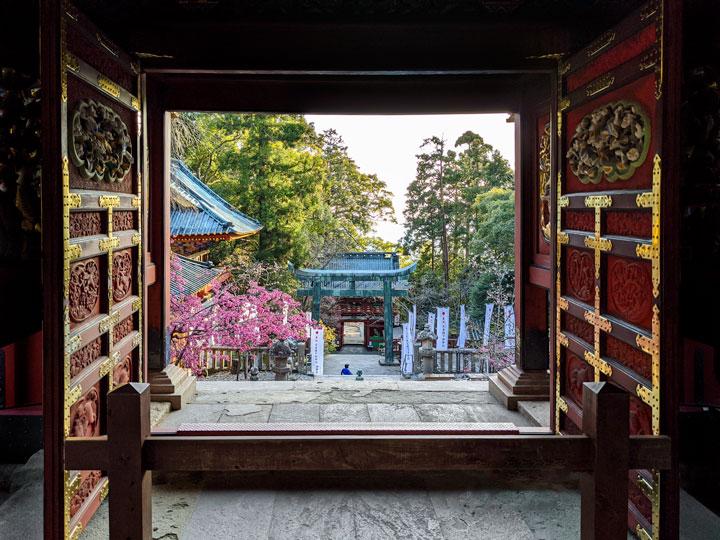 Shizuoka Kunozan Toshogu shrine doors with view to torii gate