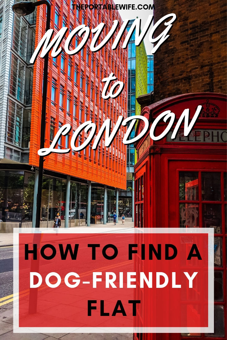 Renting in London With a Dog: How to Find a Dog-Friendly Flat