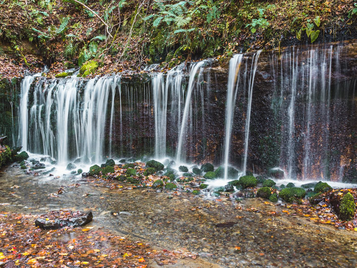 Side of Shiraito Falls with mossy rocks and autumn leaves in pool