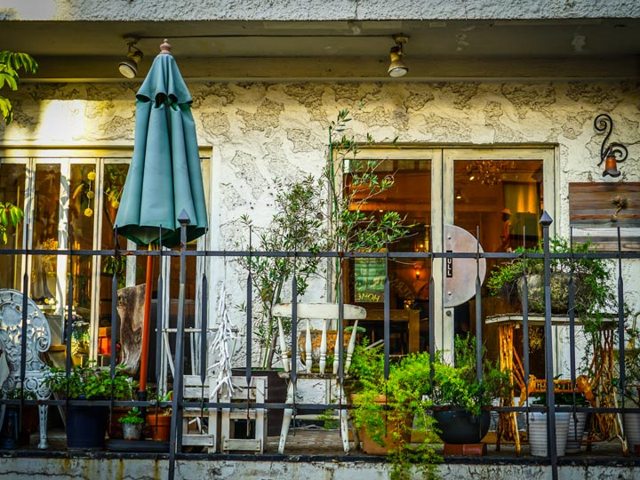 Tokyo local cafe with potted plants and blue umbrella