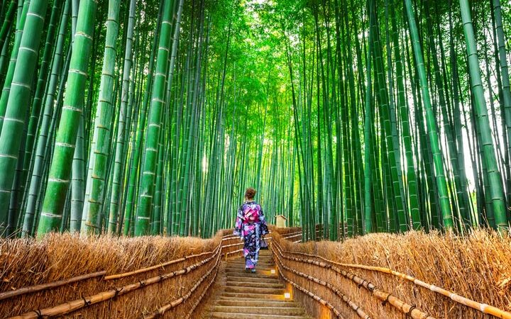 Woman traveling to Japan alone in Sagano bamboo forest