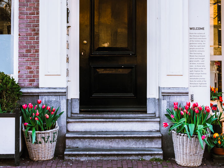 Pink tulip baskets by black door spotted while visiting Amsterdam in spring