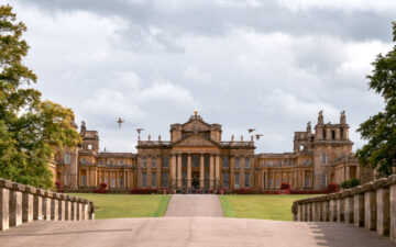 Visiting Blenheim Palace in autumn with geese flying in front of palace facade