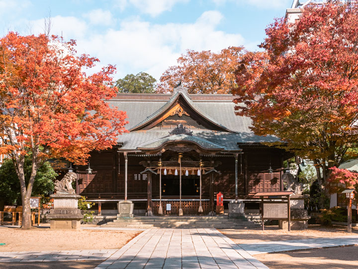 Visiting Japan in October - Matsumoto shrine with red autumn leaves