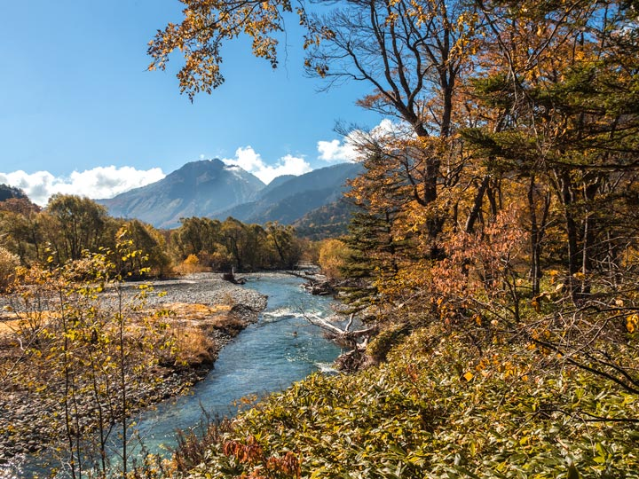 Kamikochi forest river path with distant mountain view