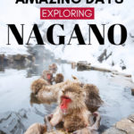 What to do in Nagano: 5 Days in Nagano Japan